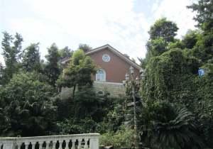 维也纳森林别墅