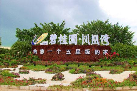 碧桂园·凤凰湾(住宅)