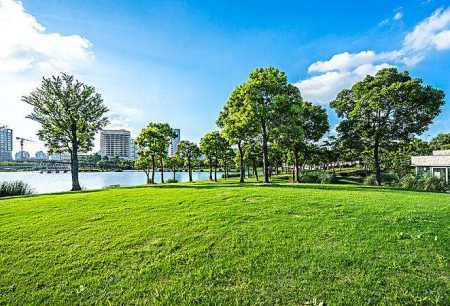 南京市永久性绿地管理规定正式实施