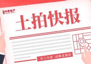 【土拍快报】阿里巴巴滨江城
